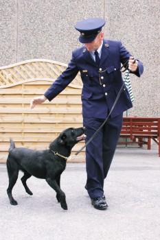Canine Unit